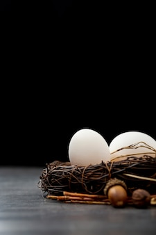 Brown nest with white eggs on a black background