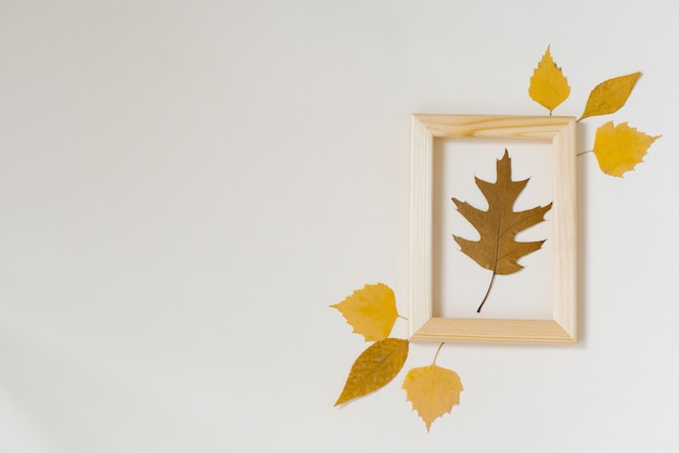 Brown oak fallen autumn leaf in a wooden frame with yellow leaves around