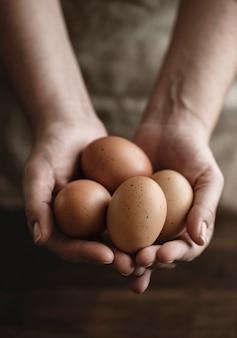 茶色の有機放し飼いの卵