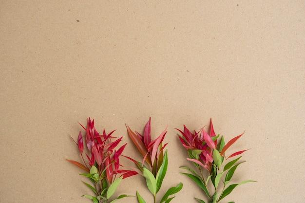 Текстура предпосылки коричневой бумаги с красными зелеными листьями. минималистский стиль
