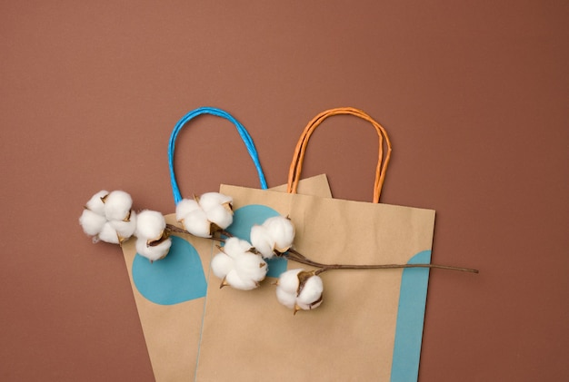 Brown paper bag and a branch with cotton flowers on a light brown background, zero waste