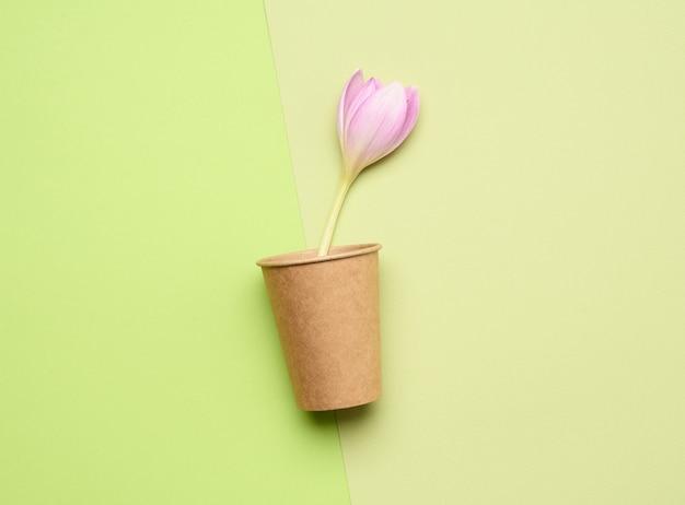 茶色の紙コップと紫色のクロッカスの花