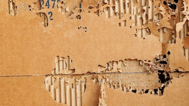 Коричневая бумага, поврежденная термитами