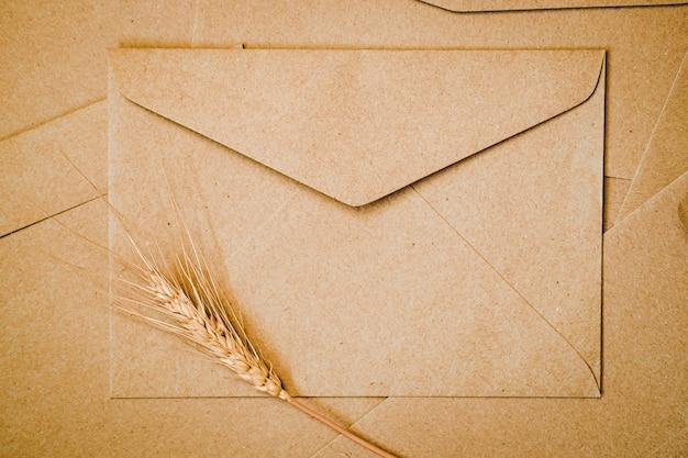 Brown paper envelope with barley dry flower. close-up of craft envelope. flat lay minimalism.