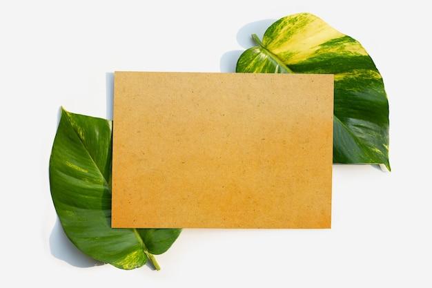 黄金のポトスまたは悪魔のツタの葉に茶色の紙。