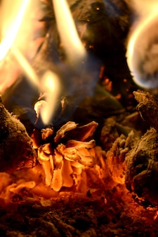 茶色の松ぼっくりが炎で火の中で燃える