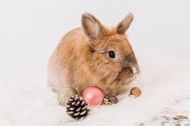 Brown rabbit with shiny baubles