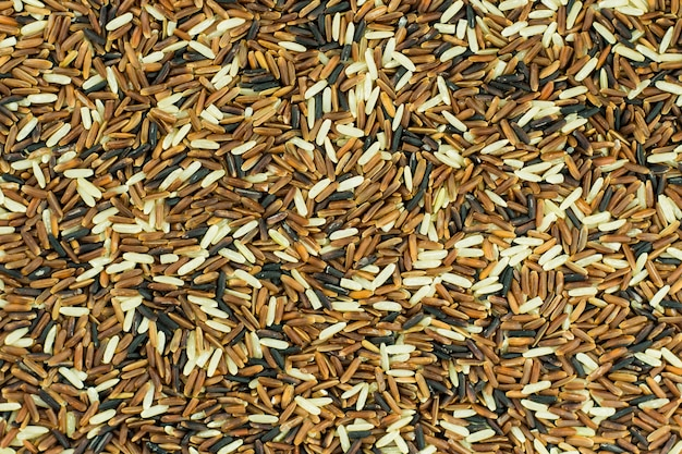 Brown rice thai background
