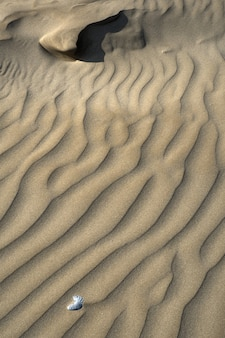 Brown sands in the desert