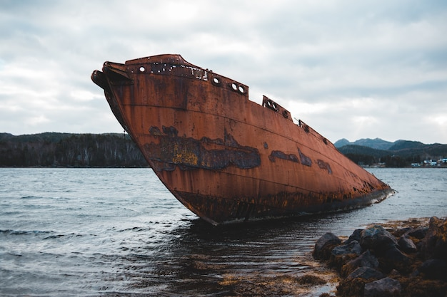 Brown ship wrecked on sea during daytime