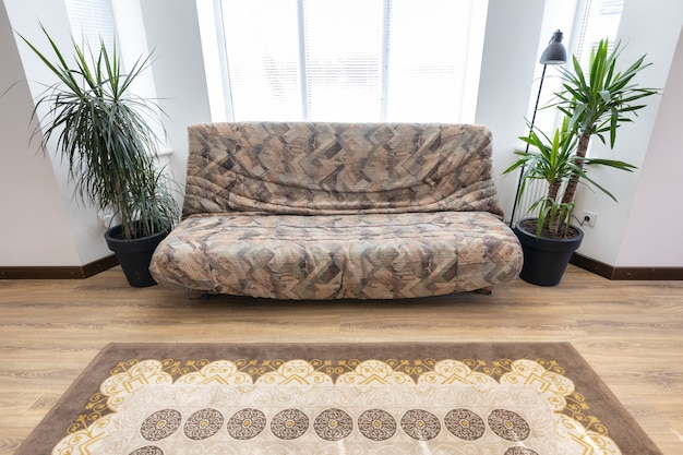 Brown sofa in modern living room interior