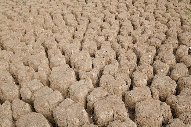 Коричневая поверхность почвы растрескалась. концепция глобального потепления. треснувшая земля текстуры.