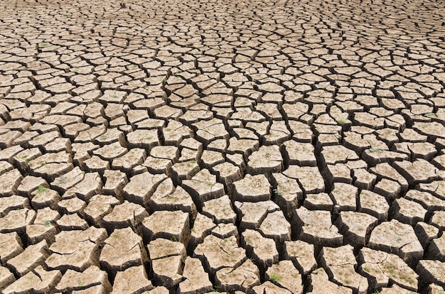 The brown soil that is cracked is deep because of the drought.