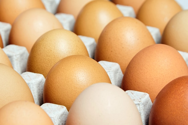 Brown and speckled fresh chicken eggs in the cardboard egg tray. closeup