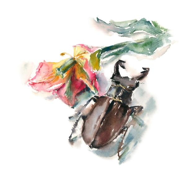 Коричневый жук-олень