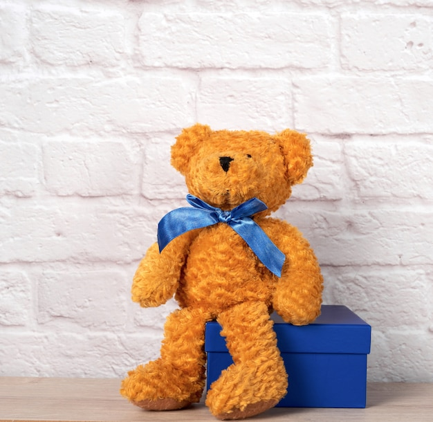 Brown teddy bear and blue gift box, white wall