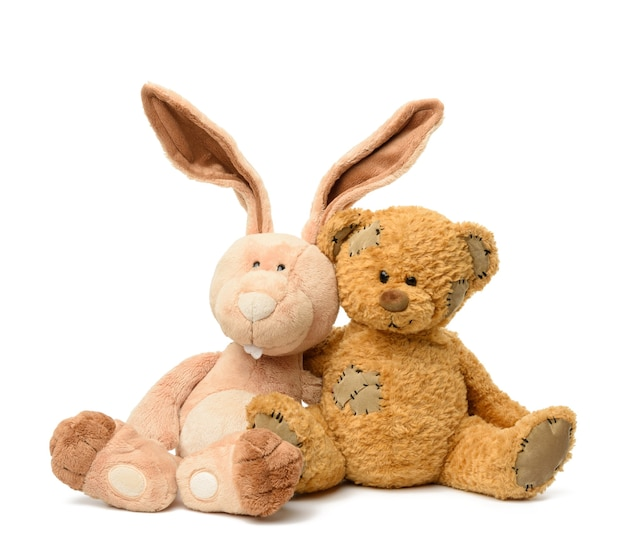 Brown teddy bear and cute rabbit sit on white isolated background, toy with patches