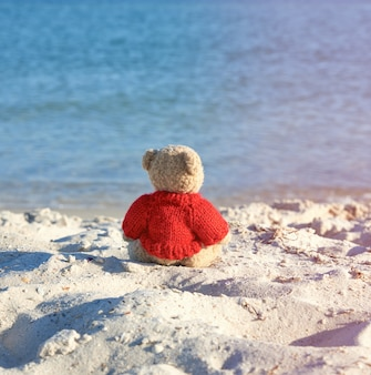 Brown teddy bear in a red sweater sitting on the sandy seashore and looks into the distance