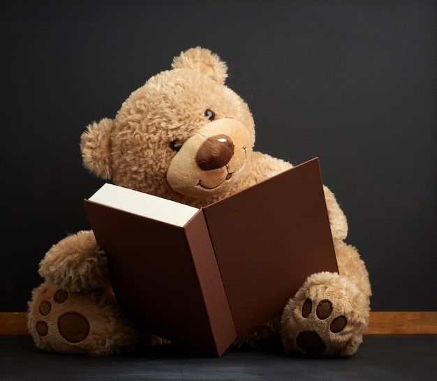 Brown teddy bear sitting with a book on a black space