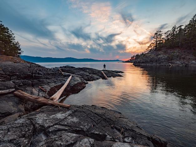 青い空と白い雲の下で湖に茶色の木のログ
