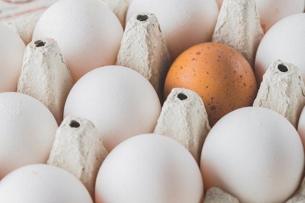 Brown and white eggs in rack
