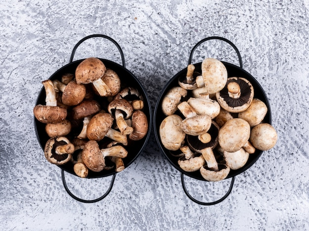 Brown and white mushrooms each inside a pot