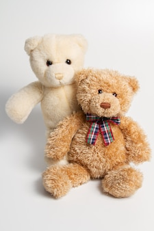 Brown and white teddy bears on white background