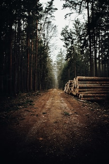 Brown wooden fence on brown dirt road