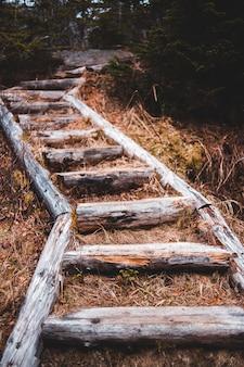 Коричневый деревянный забор на коричневой траве