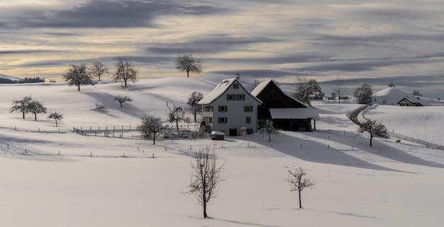 낮 동안 눈 덮힌 땅에 갈색 목조 주택
