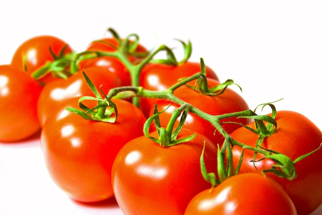 Brunch of  fresh tomatoes om white background