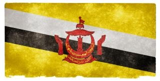Brunei grunge flag