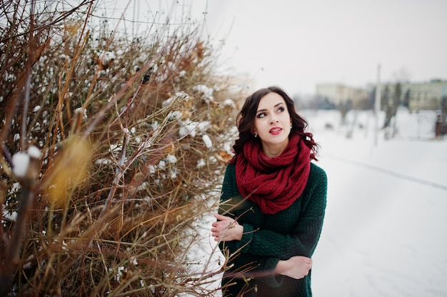 Brunette girl in green sweater and red scarf outdoor against bushes on evening winter day.
