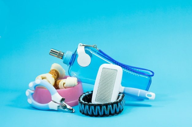 Brush comb, bowl with snacks, collars, nail scissors and water bottles on blue background