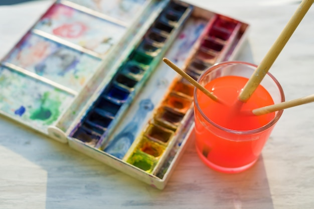 Brushes and professional watercolor paints
