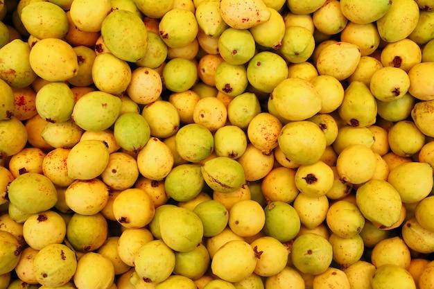Buayaba o guayabilla fruit psidium guajava linnaeus