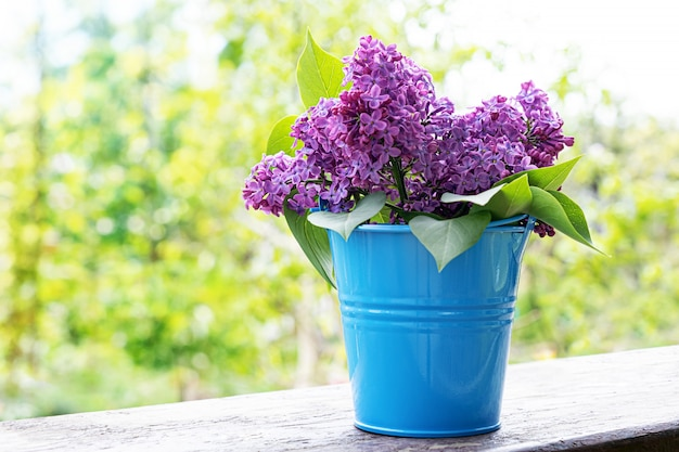 Bucket with a branch of lilac flower