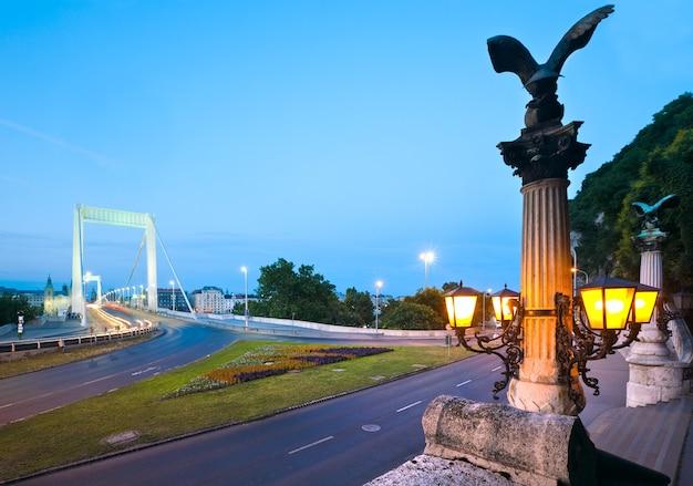 ブダペストの夜景。ハンガリーのランドマーク、エリザベス橋