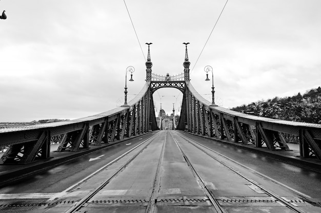 Budapest, hungary beautiful liberty bridge. black and white geometric photo