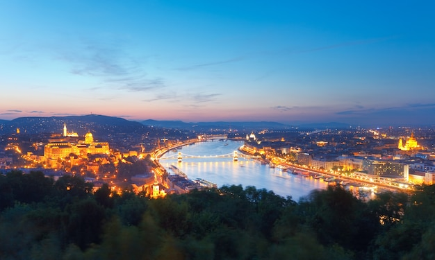 Budapest night panorama view. long exposure, trees in the foreground out of focus and some in motion blur.