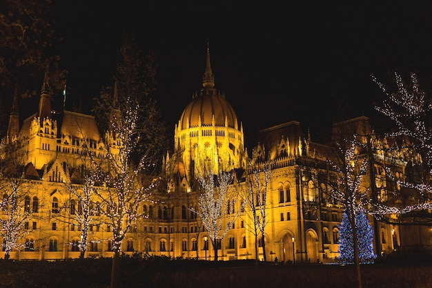 크리스마스에 조명 밤에 부다페스트 의회