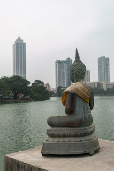 Buddha figure with skylines