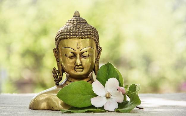 Buddha head statue, golden buddha