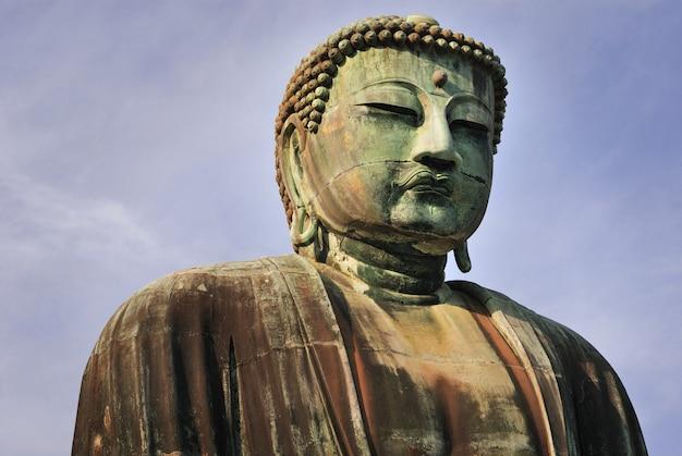 부처님 머리 프리미엄 사진