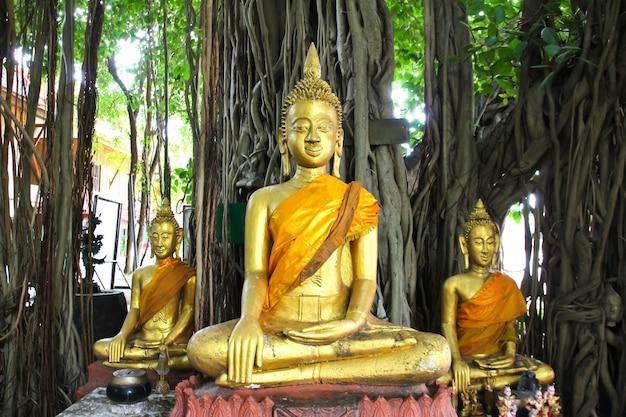 Buddha statue beautiful of wat kae temple at suphanburi