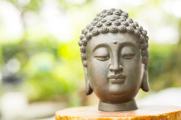Голова статуи будды в природном парке.