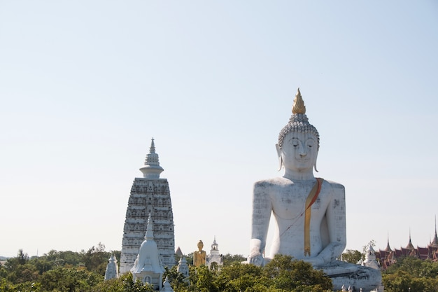 Buddha statue in temple of suphanburi thailand