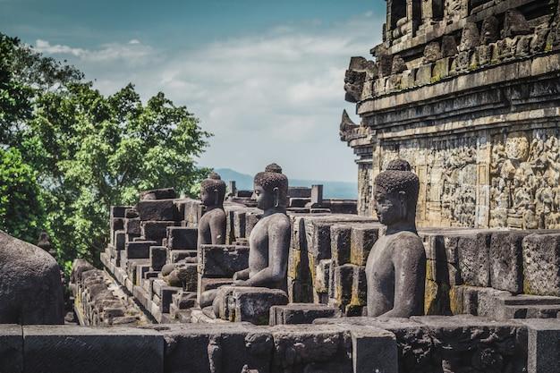 Статуи будды в буддистском храме боробудур в джокьякарте. ява, индонезия