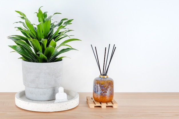 Buddha statuette home decoration near green plant and aroma lamp with incense sticks