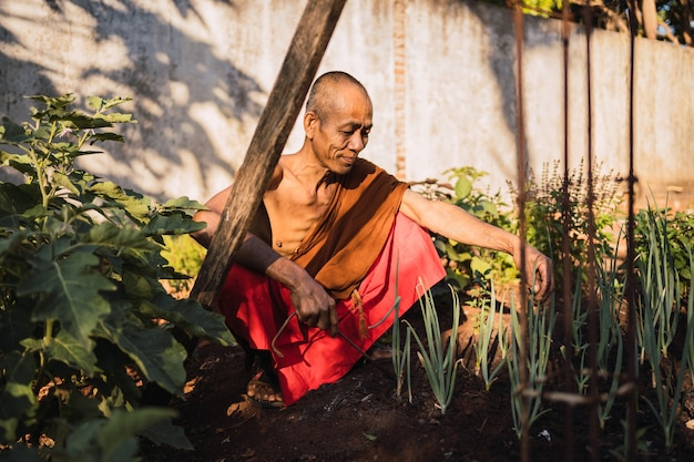 Буддийский монах в свободное время в храме. Premium Фотографии